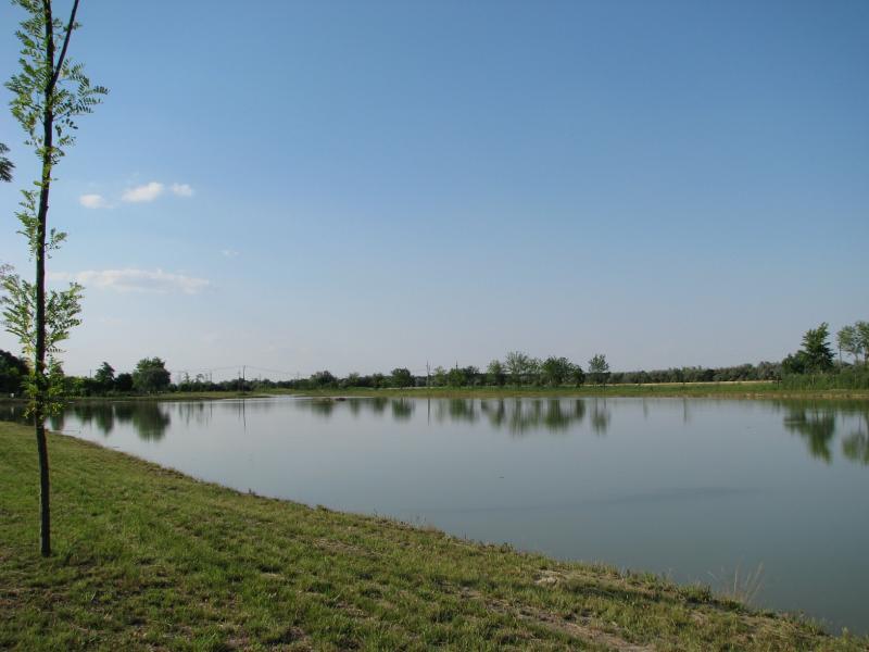 Müller horgásztó - tó , horgásztó , horgászvíz részletes adatai