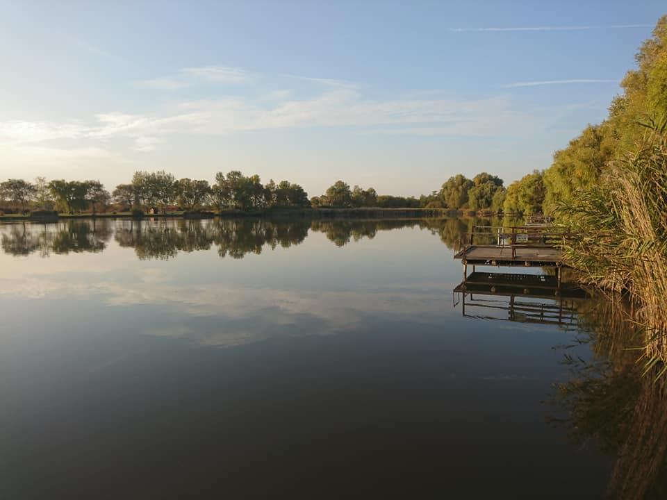 nagy hal kis tavacska társkereső oldal online társkereső orangeville